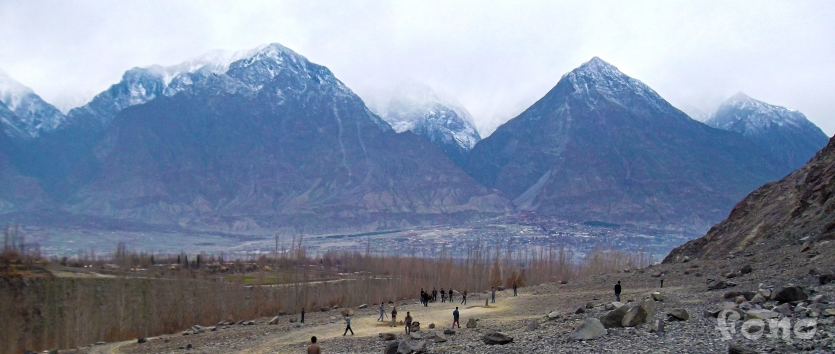 Cricket in Karakorum Range