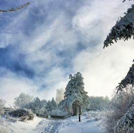Winter path to the Shipka Monument