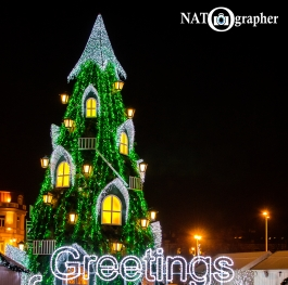 The top Christmas tree in the world from Vilnius, Lithuania