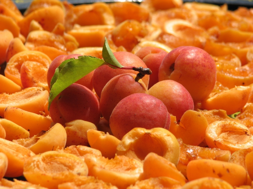 Apricots with apples