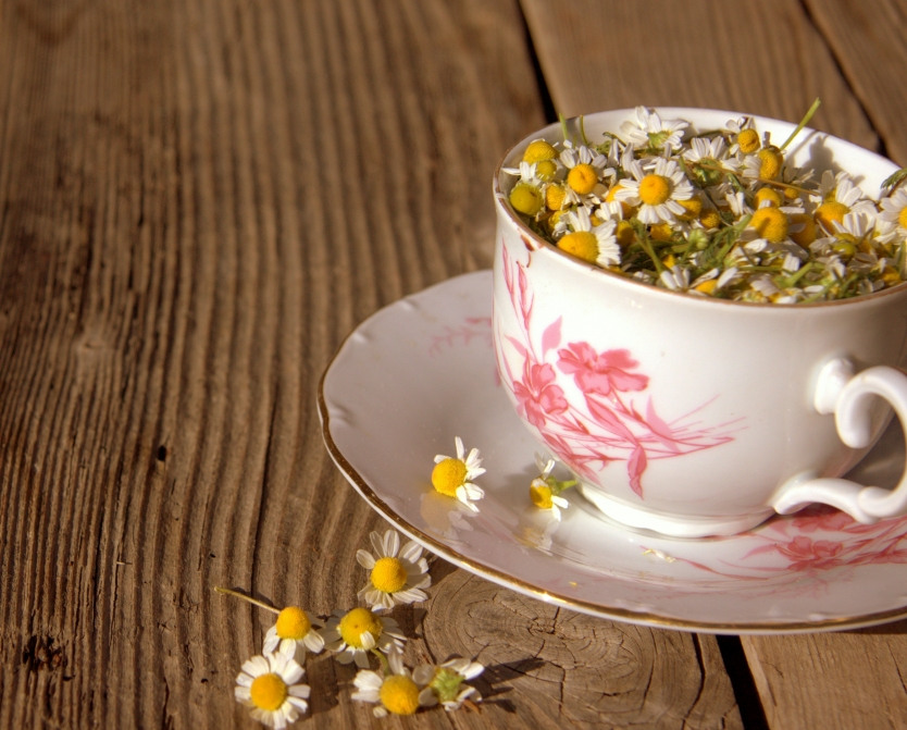Full Cup of Chamomile