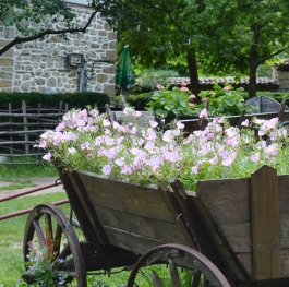 Flowers in a carriage