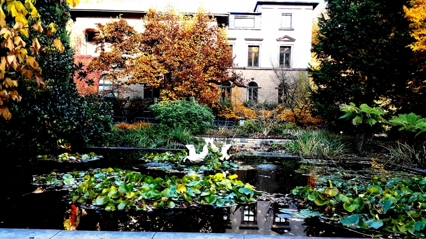 Autumn in Germany 2