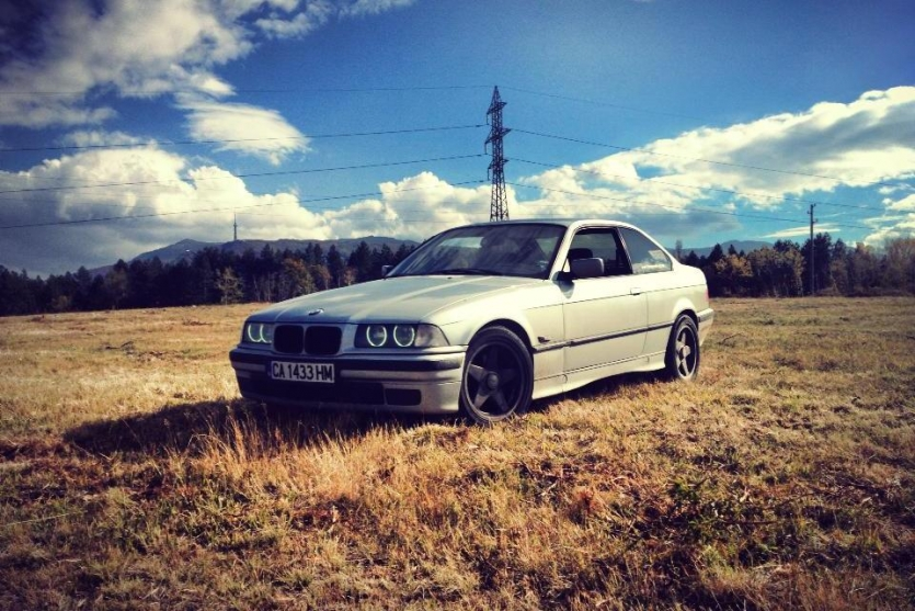 A beemer in the field