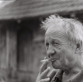 A portrait of an old man