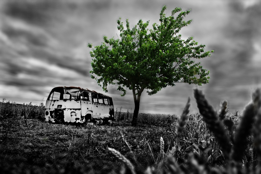 Old van and green tree - Evrithing have the end, but nature never!