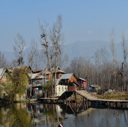 Interior of dallake kashmir
