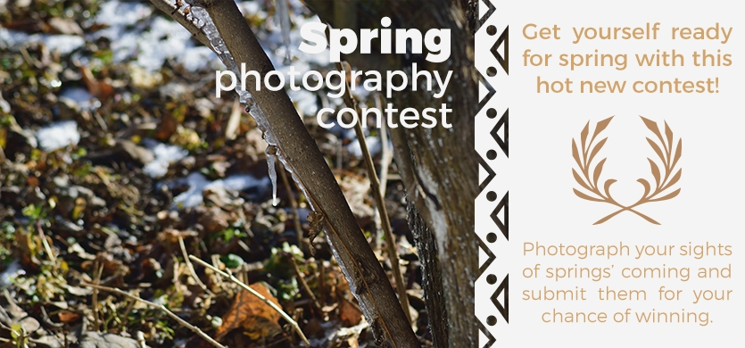 Photography contest cover