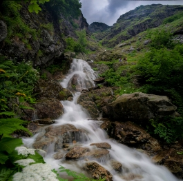 Waterfalls in Central Balkan National Park