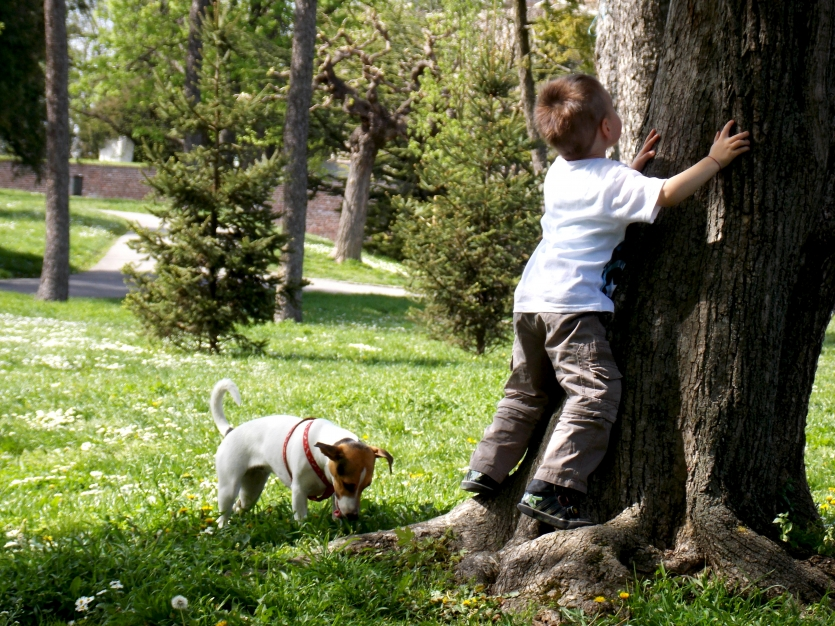 boy in the park with a dog