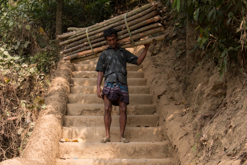 Man collecting wood in mountain