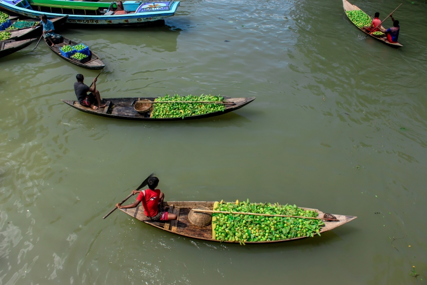 floating guava Seller