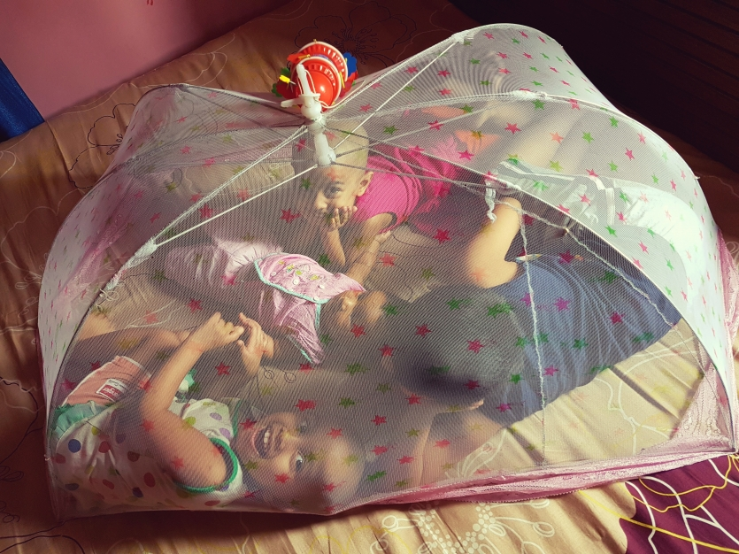 Childrens in a net