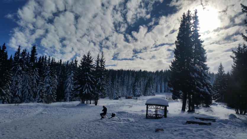 Winter in Vitosha