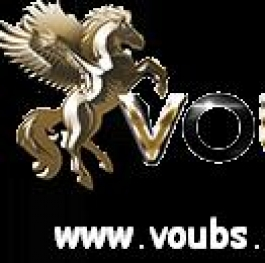 Banner for VOUBS