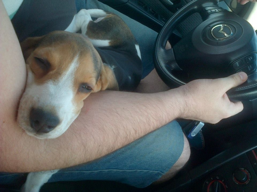 You will never drive alone