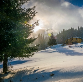 Facing the Sun - Pamporovo